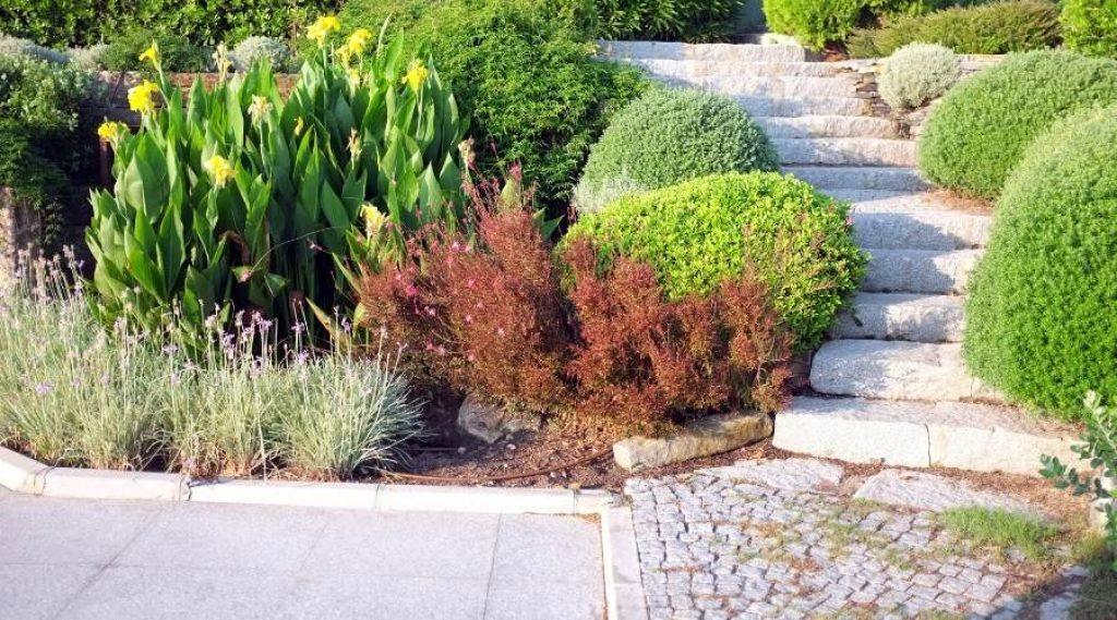 hybrid garden 1024x569 1