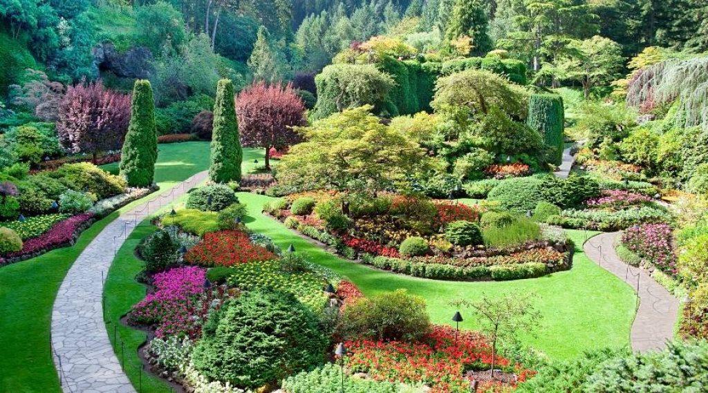 tiered garden 1 1024x569 1